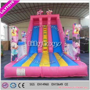Hot Inflatable Slide/Inflatable Bouncer pictures & photos