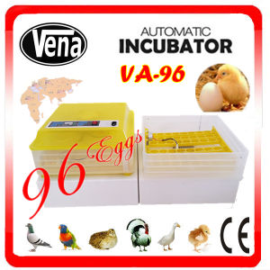 96 Eggs 12V or 110V or 220V Automatic Cheap Incubator pictures & photos