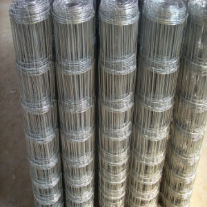 Stainless Steel Knotted Wire Mesh Fence pictures & photos