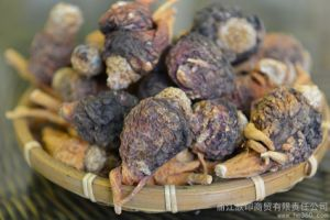 Lijiang Local Farmers Supply Black Maca for Men Sexual Health and Sex Medicines Product pictures & photos