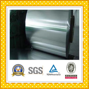 Stainless Steel Strip / Stainless Steel Coil pictures & photos