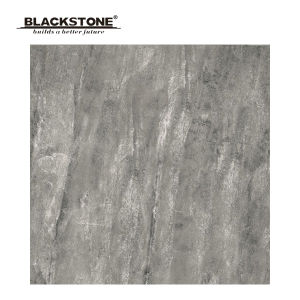 600X600 Grey Porcelain Rusric Tiles for House Decoration (661101NA3) pictures & photos