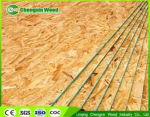 Waterproof OSB Board for Construction with Competitive Price pictures & photos