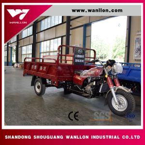 Factory Made Cheap Adults Moped Cargo Bike Trike/Electric Cargo Tricycle/Adult Trike for Sale pictures & photos