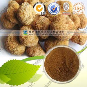 Factory Supply Hericium Erinaceus Mushroom Extract with Best Price pictures & photos