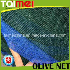 Green Tight Edge Triangle Olive Collect Net for Tunisia/Greece pictures & photos