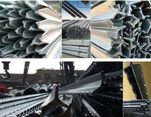 ′stainless Steel Nail, Metal Connector, Stake pictures & photos