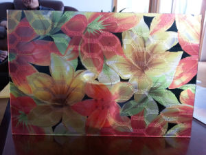 New Arrival Printed Decorative PC Sheet pictures & photos