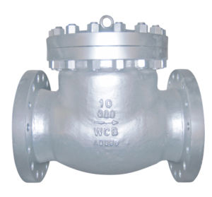 API Stainless Steel Check Valve