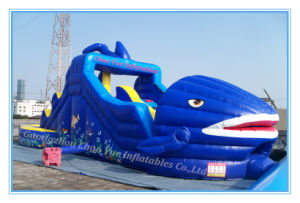 Inflatable Jumping Castle& Bouncy Castle for Amusement Park (CY-M2076) pictures & photos