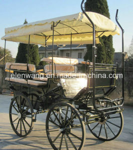 Sightseeing Horse Carriage with Enclosed Zipped Hood pictures & photos