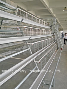 a Type Automatic Chicken Cage Poultry Equipment for Longer Use pictures & photos