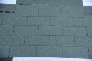 Single Layer of Asphalt Shingle