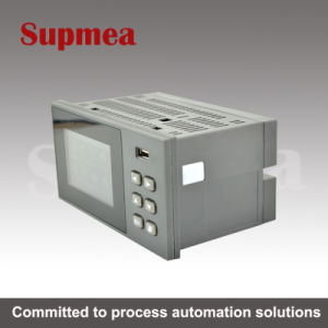 China 2 Channel Temperature Paperless Recorder with RS483 or RS232 Comminication pictures & photos