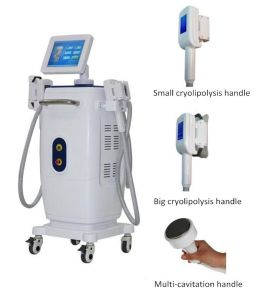Hot Cryolipolysis Portable Slimming Machine pictures & photos