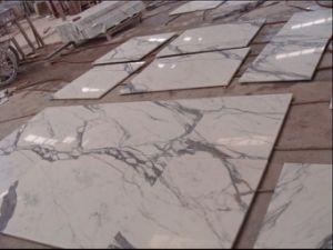 Calacatta Marbles