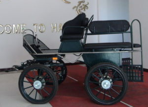 6-8 Person Four Wheel Horse Carriage Cart (HCC-I) pictures & photos