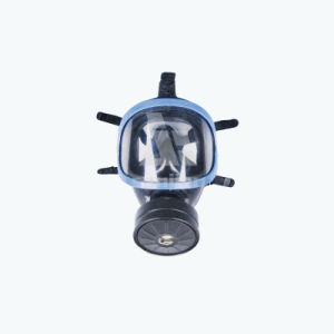 Powered Protect Full Face Breathing Respirator Safety Mask for Chemicals pictures & photos