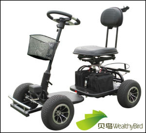 800W Electric Trekker Golf Cart 413G-3 pictures & photos