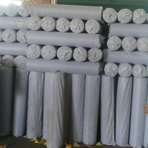 for Wall Bulding Fiberglass Mesh pictures & photos