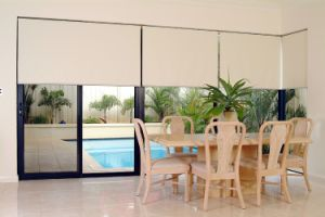 Manual Roller Blind (TMRB001) with Quite Competitive Price pictures & photos