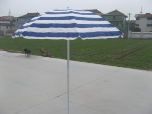 Beach Umbrella (U5033) pictures & photos