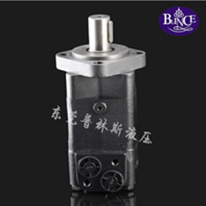 Oms100 2 Holes/4 Holes Mounting Hydraulic Motor pictures & photos