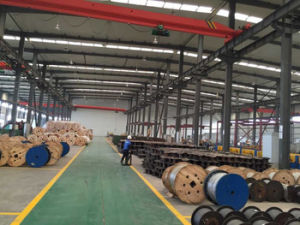 Power Transmission Aluminium Conductor Steel Supported Acss/Tw Conductor pictures & photos