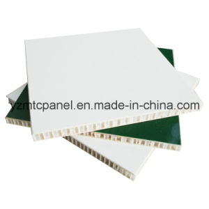 UV Resistance FRP Plastic Honeycomb Panel for Trailer pictures & photos