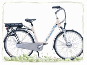 Lady City Electric Bike with 36V12ah Battery (CB-28N02-2) pictures & photos