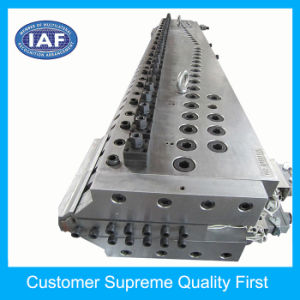 Plastic Mould Making 2800mm Long Width Plastic Extrusion Mould pictures & photos