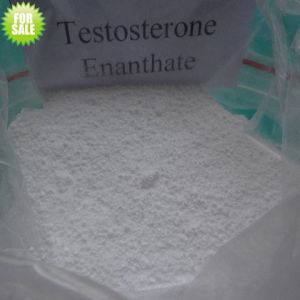 Qualified Raw Steroid for Injection Testosterone Enanthate pictures & photos