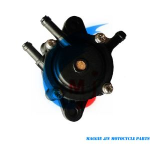Motorcycle Fuel Pump for Briggs & Stratton 808656 pictures & photos