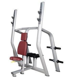Tz Fitness Commercial Gym Equipment Vertical Bench Tz-6034 pictures & photos