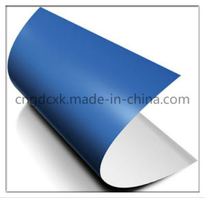 Normal Size 650mm 550mm 0.30mm UV Ctcp Blue Printing Plate pictures & photos