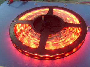Red 5050SMD LED Strip Light pictures & photos