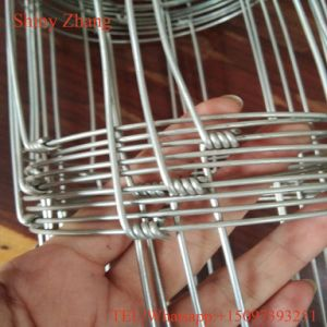 High Tensile and Endurable Galssland/Hinge Joint Fence pictures & photos