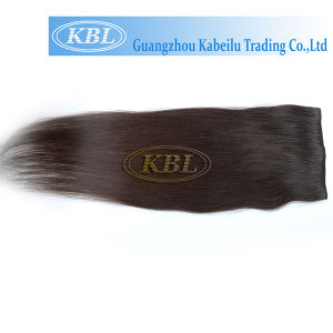 Brazilian Straight Clip-in Hair, Human Hair Extension pictures & photos