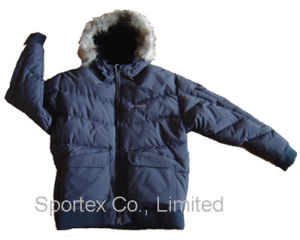 Men′s Winter Jacket (WJ-1201)