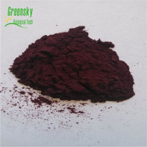 Greensky 25% Anthocyanins Mulberry Berry Extract pictures & photos