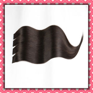 Dark Color Brazilian Human Hair PU Skin Weft Silky 24inch pictures & photos