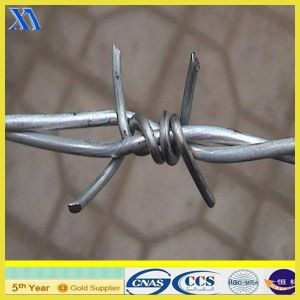 Galvanized Barbed Iron Wire for Fence (ISO 9001) pictures & photos