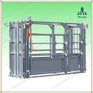 Heavy Duty Cattle Squeeze Chute/Crate pictures & photos