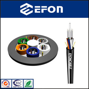 G652D FRP Central Strength Member Optical Fiber Cable (GYFTY) pictures & photos