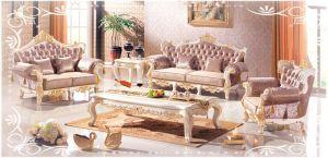 Hotsale Latest Design Livingroom Sofa Set Home Furniture (CT-07)