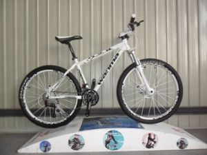 New Type 21 Speed Mountain Bike with Alloy Frame pictures & photos