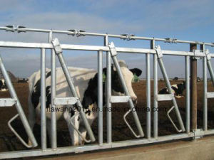 Heave Duty Horizontal /Diagonal Calf Fending Fence Feed Barriers pictures & photos