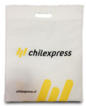 Advertisement Non Woven Bag with Printing Logo