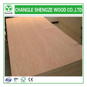 Reasonable Price Mr/Melamine/WBP/Phenolic Glue Plywood for Decoration pictures & photos