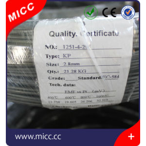 Hot Sale Resistance Heating Wire, Electrical Resistance Wire, Nichrome Wire Heating Elements pictures & photos